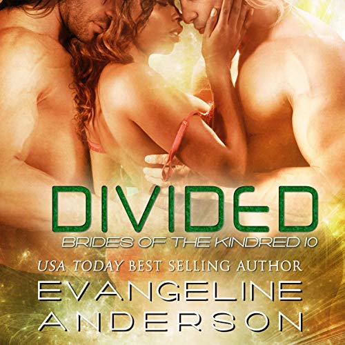 Divided Audio Cover