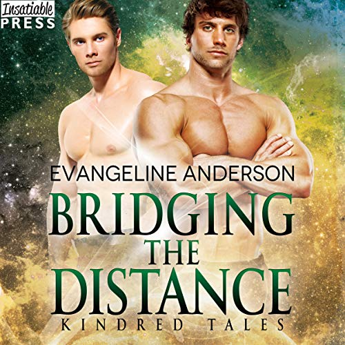 Bridging the Distance Audio Cover